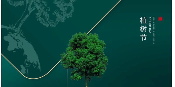 植树节|用心种下的希望